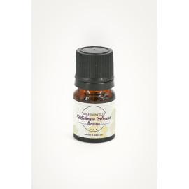 huile essentielle hélichryse italienne de provence