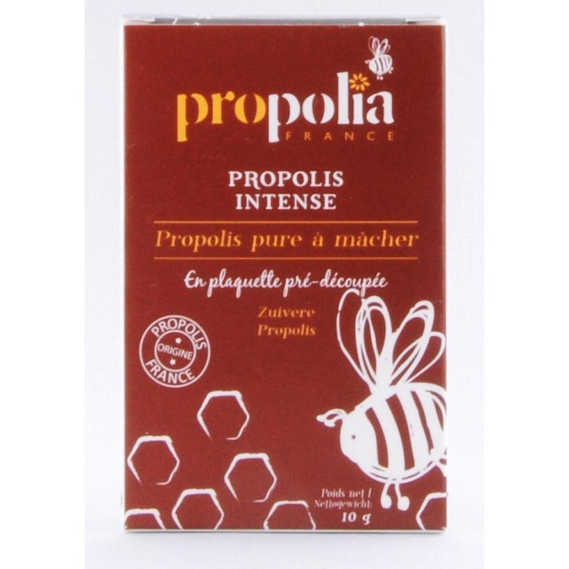 propolis pure à mâcher